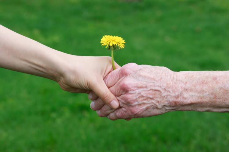 New Zealand Needs To Invest In Elder Abuse Education And Prevention